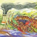 Which will win? Sundarban or harmful projects?